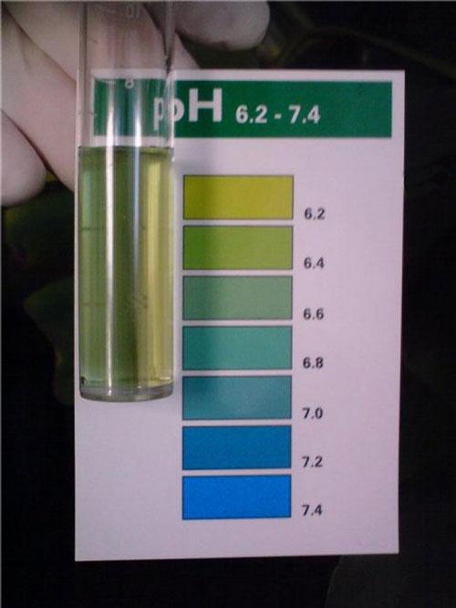 Кислую или щелочную реакцию воды определяет показатель концентрации водородных ионов - рн