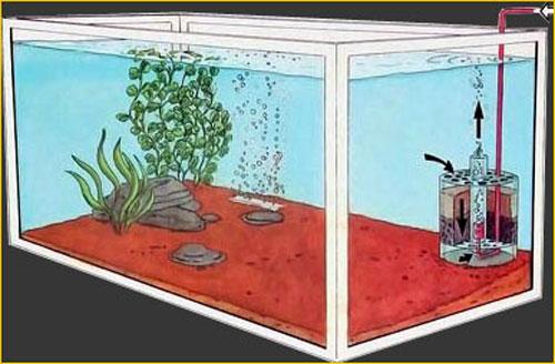 Почему аквариумный фильтр не пускает пузыри